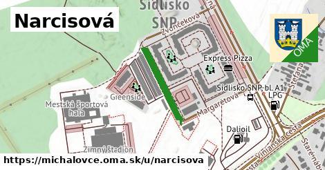 ilustrácia k Narcisová, Michalovce - 190m