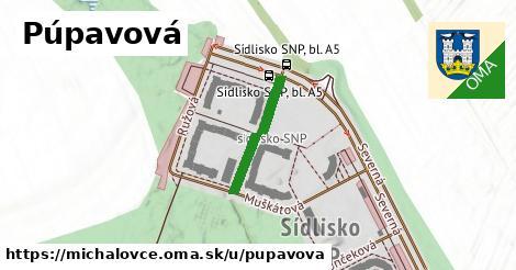 ilustrácia k Púpavová, Michalovce - 181m
