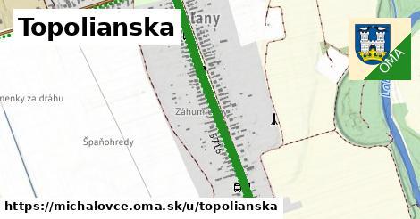 ilustračný obrázok k Topolianska, Michalovce