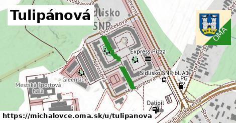 ilustrácia k Tulipánová, Michalovce - 173m
