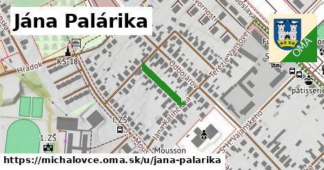 Jána Palárika, Michalovce