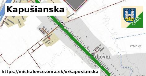 Kapušianska, Michalovce