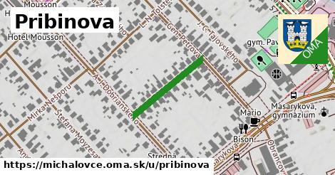 Pribinova, Michalovce