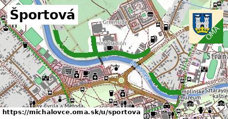 ilustrácia k Športová, Michalovce - 0,74km