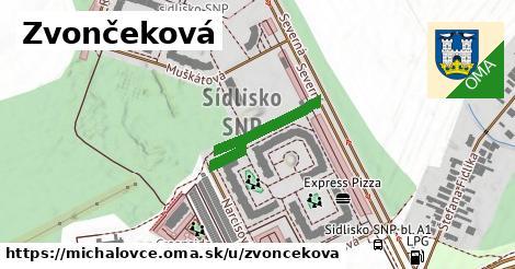 ilustrácia k Zvončeková, Michalovce - 223m