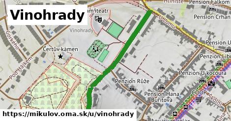 ilustrácia k Vinohrady, Mikulov - 461m