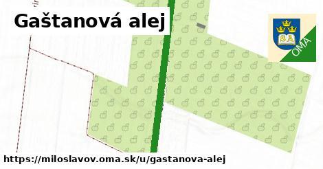 ilustrácia k Gaštanová alej, Miloslavov - 1,39km