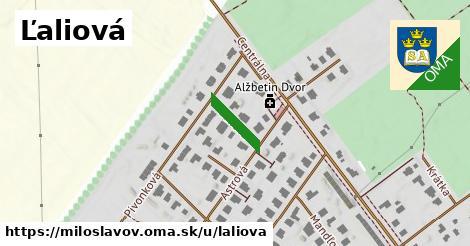 ilustrácia k Ľaliová, Miloslavov - 107m