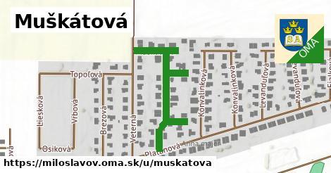 ilustrácia k Muškátová, Miloslavov - 334m
