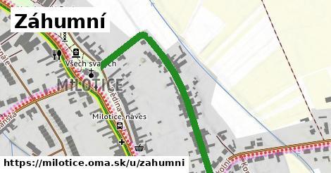 ilustrácia k Záhumní, Milotice - 484m
