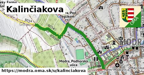 ilustrácia k Kalinčiakova, Modra - 611m