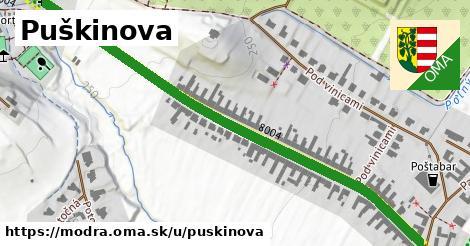 Puškinova, Modra