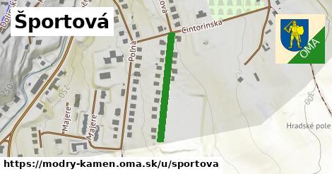 ilustrácia k Športová, Modrý Kameň - 248m