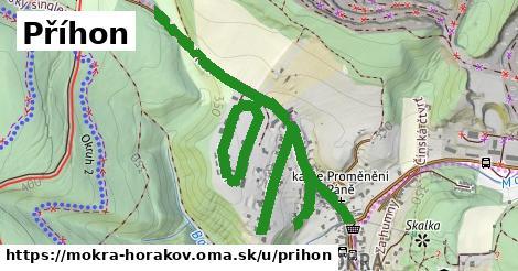 ilustrácia k Příhon, Mokrá-Horákov - 461m