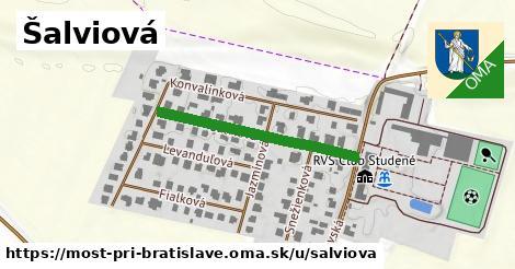 ilustrácia k Šalviová, Most pri Bratislave - 299m