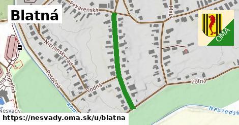 ilustrácia k Blatná, Nesvady - 313m