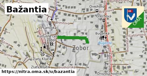 ilustračný obrázok k Bažantia, Nitra