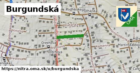 ilustračný obrázok k Burgundská, Nitra
