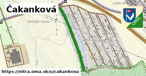 ilustračný obrázok k Čakanková, Nitra