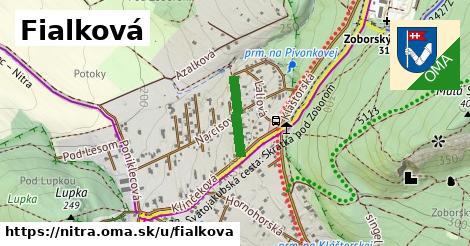 ilustrácia k Fialková, Nitra - 253m