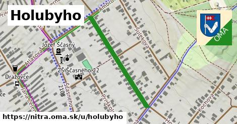 ilustrácia k Holubyho, Nitra - 340m