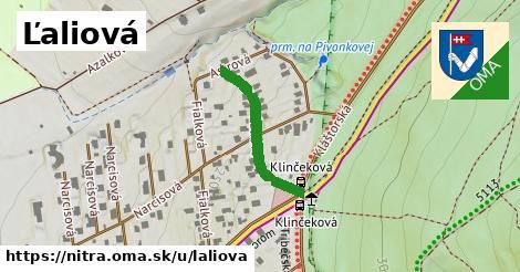 ilustračný obrázok k Ľaliová, Nitra