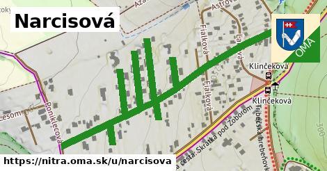 ilustrácia k Narcisová, Nitra - 0,92km