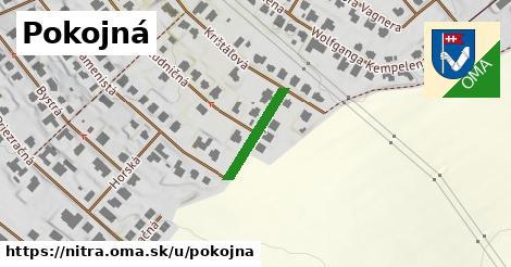 ilustrácia k Pokojná, Nitra - 158m