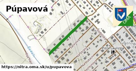 ilustrácia k Púpavová, Nitra - 291m