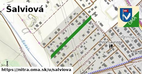 ilustrácia k Šalviová, Nitra - 297m