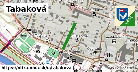 ilustrácia k Tabaková, Nitra - 156m