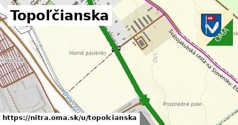 ilustrácia k Topoľčianska, Nitra - 3,9km