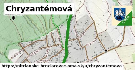 ilustrácia k Chryzantémová, Nitrianske Hrnčiarovce - 676m