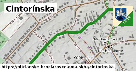 ilustrácia k Cintorínska, Nitrianske Hrnčiarovce - 640m