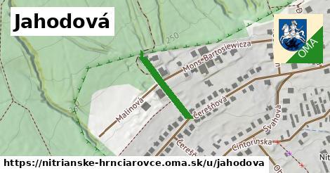 ilustrácia k Jahodová, Nitrianske Hrnčiarovce - 170m