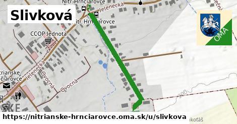 ilustrácia k Slivková, Nitrianske Hrnčiarovce - 331m
