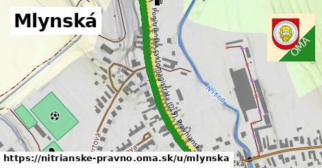 ilustrácia k Mlynská, Nitrianske Pravno - 469m