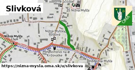 ilustrácia k Slivková, Nižná Myšľa - 276m