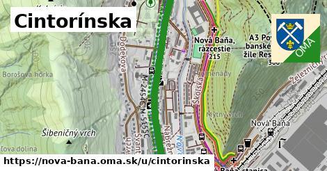 ilustračný obrázok k Cintorínska, Nová Baňa