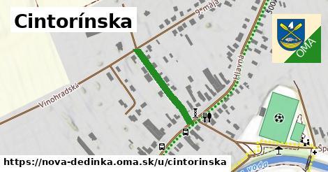 ilustrácia k Cintorínska, Nová Dedinka - 211m