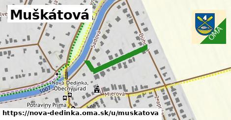 ilustrácia k Muškátová, Nová Dedinka - 225m