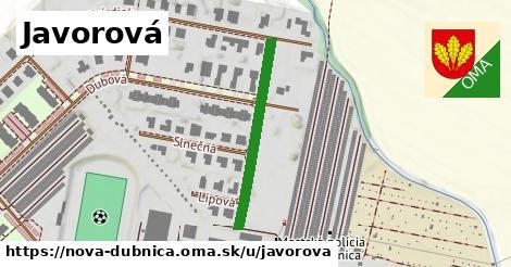 ilustrácia k Javorová, Nová Dubnica - 279m