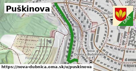 ilustrácia k Puškinova, Nová Dubnica - 401m