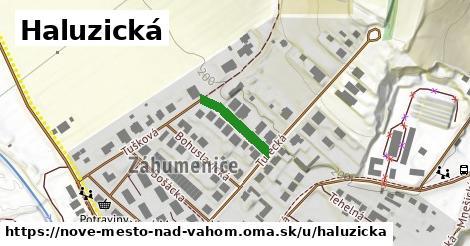 ilustrácia k Haluzická, Nové Mesto nad Váhom - 137m