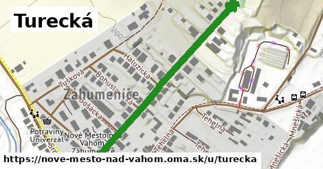 ilustrácia k Turecká, Nové Mesto nad Váhom - 585m