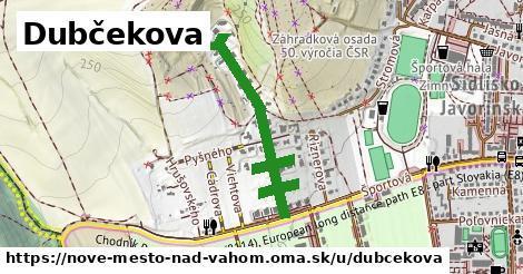 Dubčekova, Nové Mesto nad Váhom