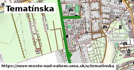 Tematínska, Nové Mesto nad Váhom