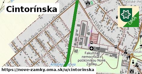 ilustrácia k Cintorínska, Nové Zámky - 0,78km