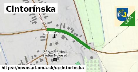 ilustračný obrázok k Cintorínska, Novosad