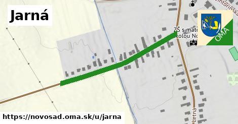 ilustračný obrázok k Jarná, Novosad